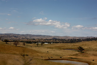 Photo: Year 2 Day 227 - Rolling Fields As Far As You Can See