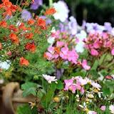 馨藝庭園咖啡
