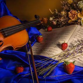 by Richard Saxon - Artistic Objects Still Life ( march, still life, 2016, violin still life, roses, flowers )