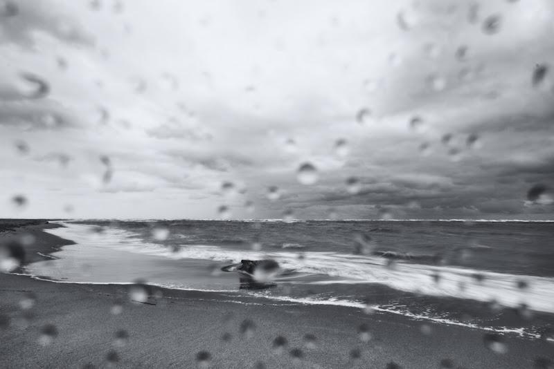 con sta pioggia con sto vento... di Mattia Martegani Photo -MMP