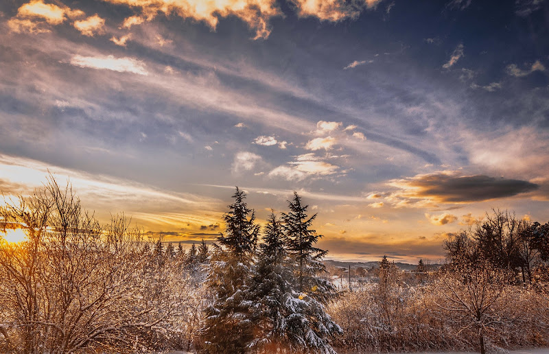 Sfumature d'inverno di andreap