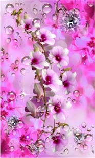 Diamonts and Orchids LWP - náhled
