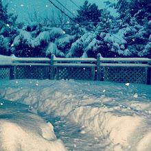 Photo: El balcón de mi casa, ya hice un caminito para que el perro pueda salir tranquilo #nieve #Invierno