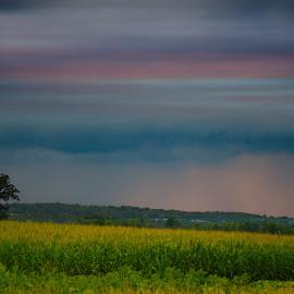 by Gerard Hildebrandt - Landscapes Prairies, Meadows & Fields