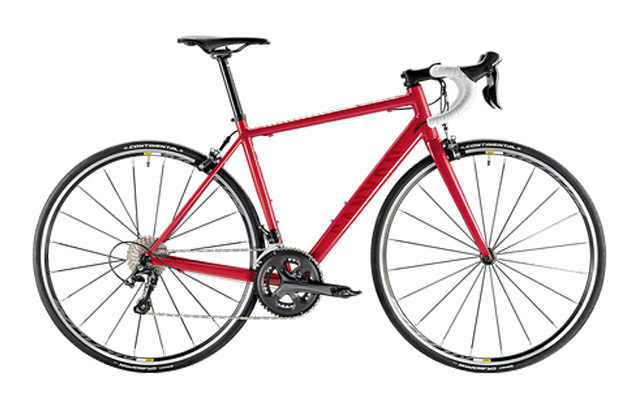 Canyon Endurace WMN AL 6.0