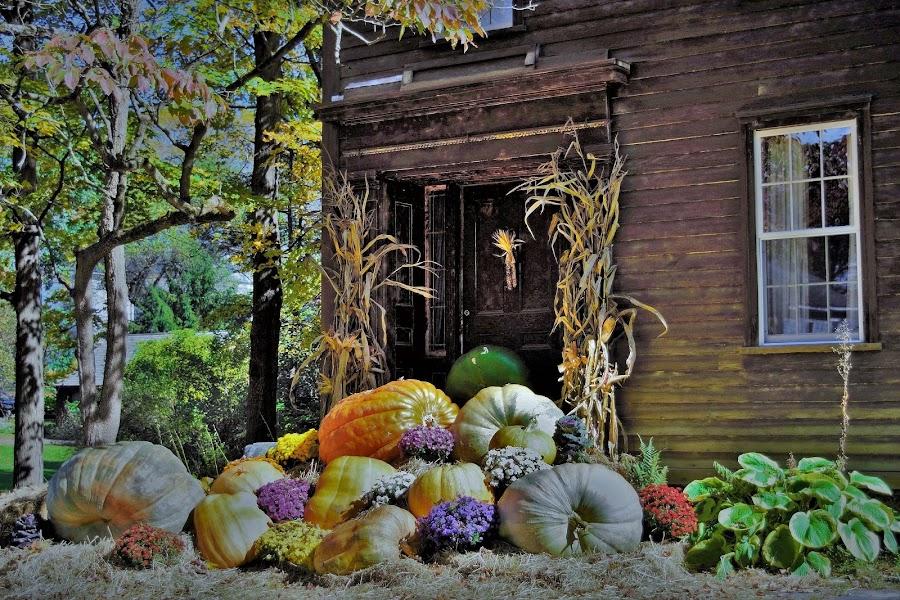 State Road Old Deerfield Fall display. by Monroe Phillips - City,  Street & Park  Neighborhoods (  )
