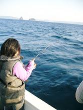 Photo: もう一丁! ・・・また、バレちゃった。 魚影は、ヤズみたいでした!