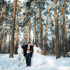 Wedding photographer Elena Volkova (mishlena). Photo of 01.02.2016