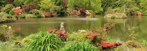 jardin de gondremer : un coin nature en lorraine