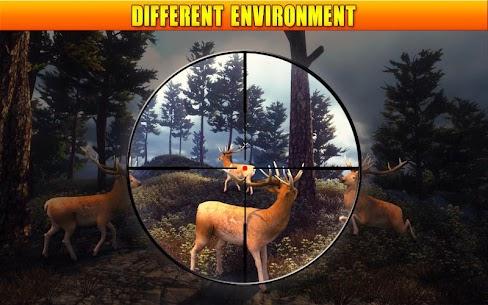 Deer Hunting 19 6