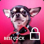 Chihuahua Little Cute Dog Lock Screen PIN Security