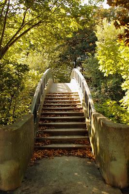Il ponte sul nascere dell'autunno di mt antona