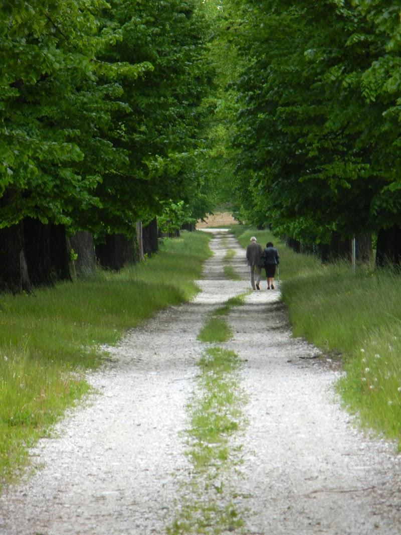 Una strada lunga una vita di Liura88