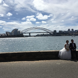 Sydney Harbour by Dawn Simpson - Wedding Bride & Groom ( harbour bridge, sydney harbour, opera house, weddings, bride & groom, water,  )
