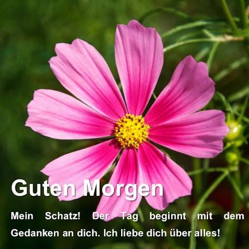 Guten Morgen Liebe Freunde 31 Apk Download Com
