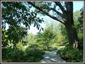 Photo: Bronx Botanical Garden, NY