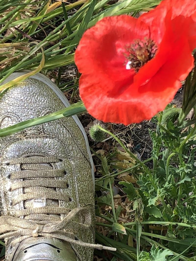 Camminare con una calzatura Made in itaty👍 di mesy