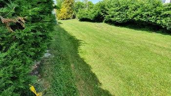 terrain à Proville (59)