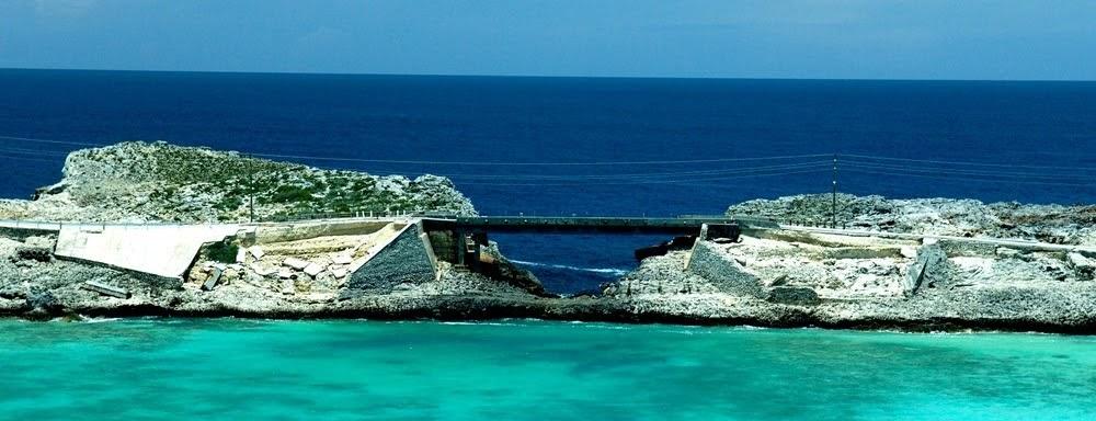 Glass Window Bridge, a ponte do contraste das águas