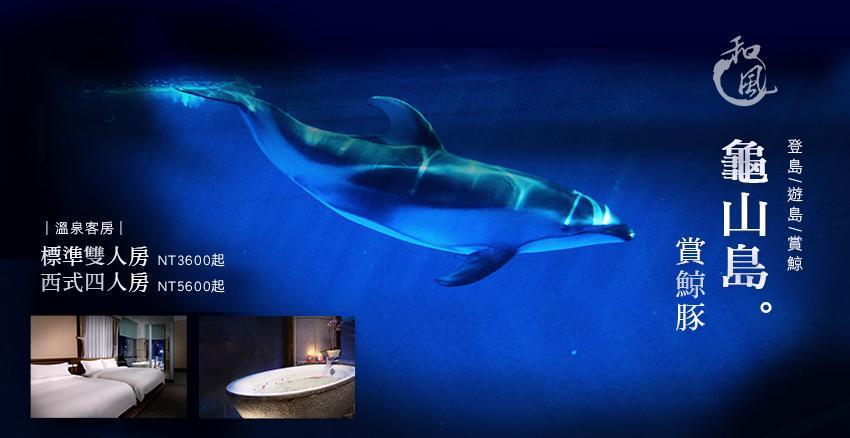 dolphin-礁溪 (1).jpg