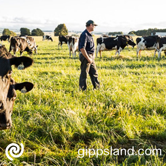 Seasonal agricultural workers are essential to boost the agriculture industry during some of its busiest times, the agreement will not impact the number of seasonal workers required with those workers continuing to be prioritised