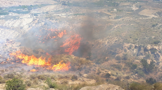 El incendio forestal de Terque calcina 6,3 hectáreas de matorral