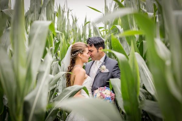 Hochzeitsfotograf Simone Kellner (kellner). Foto vom 13.02.2017