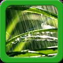 Rain Live Wallpapers icon