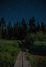 Photo: Path to the Stars  Here's another shot from Mirror Lake the other night. The moon came up and was shining bright. So I used its light to illuminate the path that extends around the lake where the marshy part is.  Happy Hump Day everybody!  #nightphotography #stars