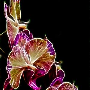 Steeped Orchid Jive.jpg
