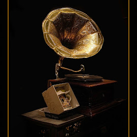 gramophone by Darko Kordic - Artistic Objects Antiques