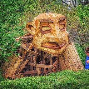 Hello My Pretty! by Lynn Kirchhoff - Artistic Objects Still Life ( artist, build, troll, statue, giant, wood, arboretum, recylcle,  )