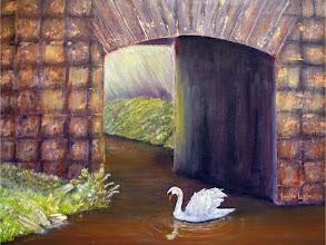 Photo: The Mill Swan by Loretta Luglio
