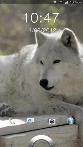 Wolf Mountain Live Wallpaper