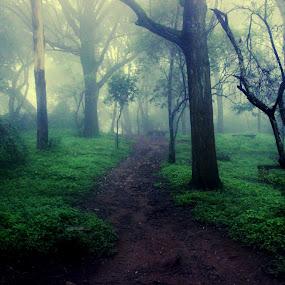 Nandi Hill... Bangalore  by Shubhendu Bikash Mazumder - Landscapes Mountains & Hills