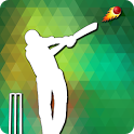 Cricket Net Run Rate Calculate icon