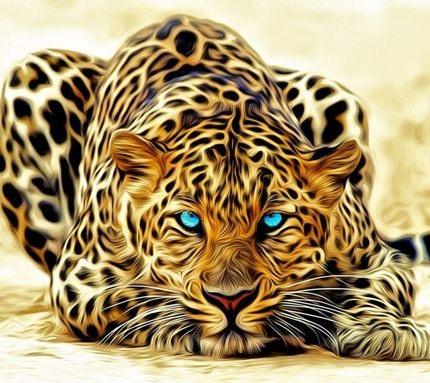 ライオンの壁紙