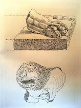 Photo: Fig. 22. Leone B da Faleri, peperino. Roma, Museo di Villa Giulia, disegno (1903).