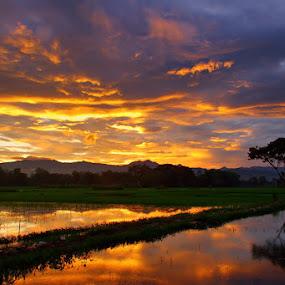 by Ahmad Soedarmawan - Landscapes Sunsets & Sunrises
