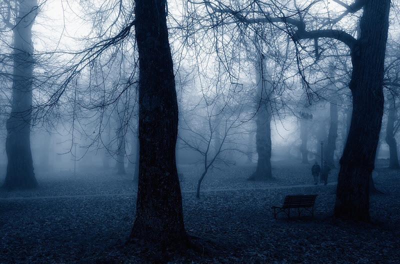 A spasso nel parco di Gloria Staffa