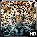 Jaguar Wallpaper icon
