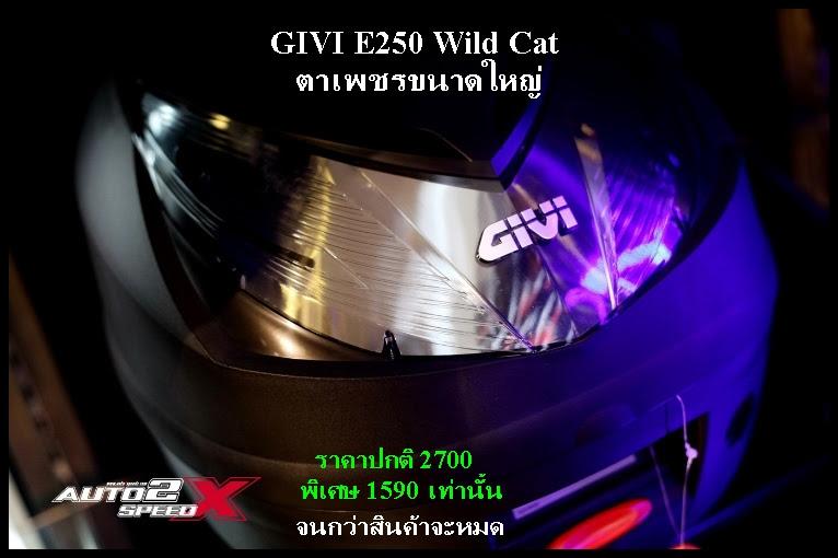 Givi E250 Wild cat