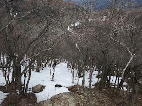 小岐須峠へ滑りながら下りていく