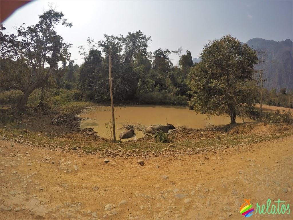 Camino a Blue Lagoon Vang Vieng
