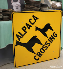 Photo: Alpaca Crossing sign at the Jester Farm booth at Delmarva Wool & Fiber Expo 2015 (Fall) | Photograph Copyright Robert J Banach #oceancitycool