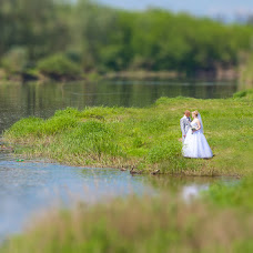 Wedding photographer Elena Kravchenko (kraft62). Photo of 26.05.2014