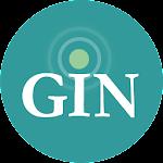 GINsystem