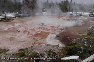 Photo: Lower Geyser Basin, Fountain Paint Pot trail area. Yellowstone National Park. Wyoming
