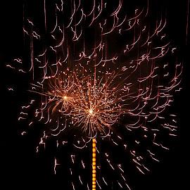 fuoco d'artificio come un fiore by Patrizia Emiliani - Abstract Fire & Fireworks ( fiore, fuoco d'artificio,  )