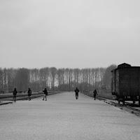 Birkenau oggi di